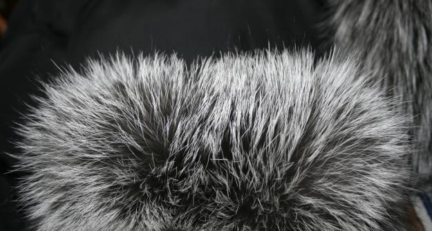 Как легко покрасить мех песца норки чернобурки лисы в домашних условиях
